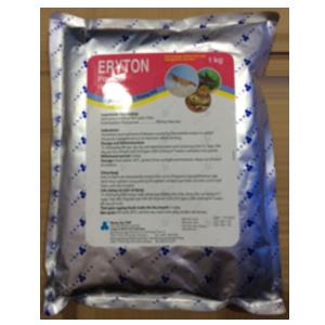 Eryton